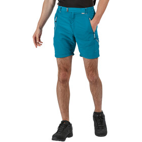 Regatta Sungari II Shorts Hombre, olympic/gulfstream
